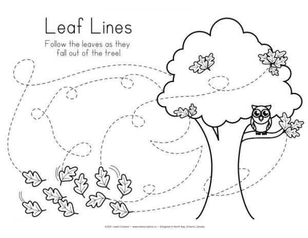 Leaf Lines - Lewis Creative
